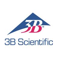 3b-company
